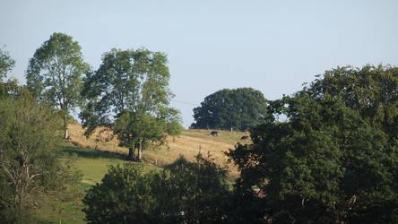 11-08-2014 Wiltshire VII by pdurdin