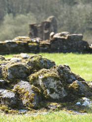 6-4-2015 Kirkham Priory III by pdurdin