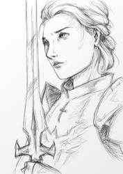 Grey Warden by FollowingStars