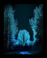 Starry Night... by Violet-Kleinert
