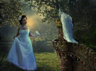 Morning Magic by Violet-Kleinert