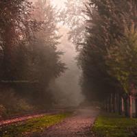 Foggy October by Violet-Kleinert