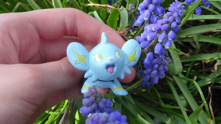 Shinx and a flower 2 by xThe-Twilight-Wolfx