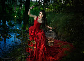 Forest Fairy Tale by Annie-Bertram