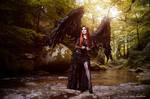 The dark angel by Annie-Bertram