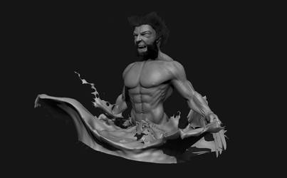 Wolverine Sculpt by afaq125