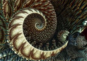 Spiral by DDDPhoto