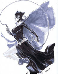 Classic Catwoman by Peter-v-Nguyen