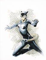 Catwoman copics by Peter-v-Nguyen