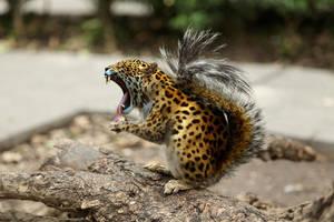 mr jaguar squirrel by oatsie77