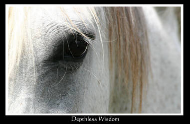 Depthless Wisdom by Desiderando