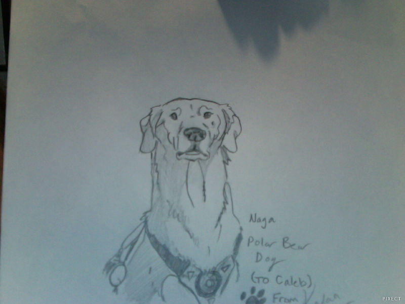 Naga Doodle by FireNationPhoenix