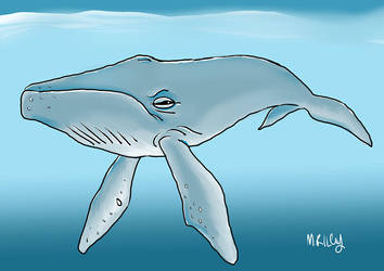 Humpback by RILEY23