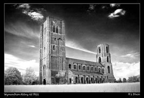 Wymondham Abbey rldIR02 by richardldixon