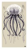 The Jellybrainfish by TmoeGee