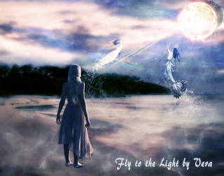 Fly to the light by veraelyazji