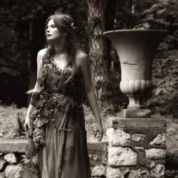 romanticism's spirit by sesharin