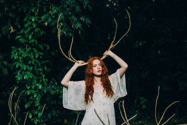 Deer heart by juliadavis