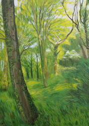 Woodland by KittyCooper