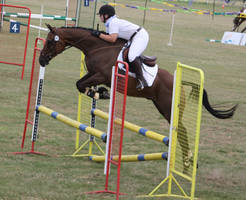 STOCK Showjumping 495 by aussiegal7