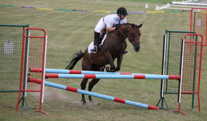 STOCK Showjumping 497 by aussiegal7