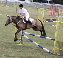 STOCK Showjumping 503 by aussiegal7