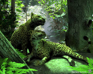 Two Jaguars by Schiraki