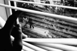 Observation. by wyrazobcy