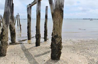 Crumbling Dock Close by JJPoatree