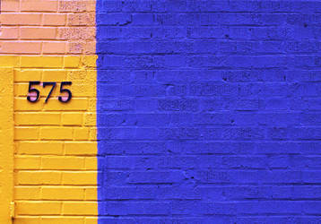 575 Blue And Yellow by JJPoatree