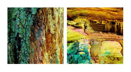 Nature Imitates Art by JJPoatree
