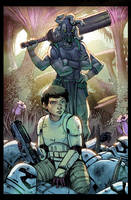 Star Wars The Fallen cover color commission by danimation2001