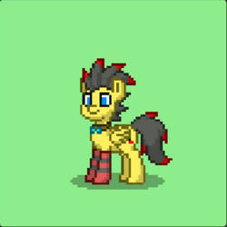 My OC (ponytown version) by miki123p