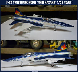 F-20 Tigershark Shin Kazama Model: 1:72 Scale by lonewolf3878