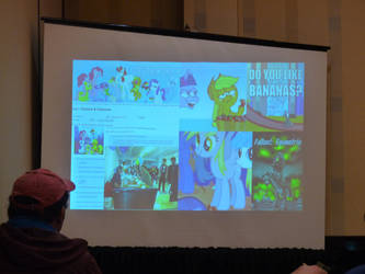 HarmonyCon 2019: Brony Fandom History Panel by lonewolf3878