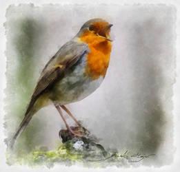 Singing redhead by A2812