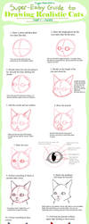 Super-Easy Guide to Drawing Realistic Cats - Faces by TigerMoonCat