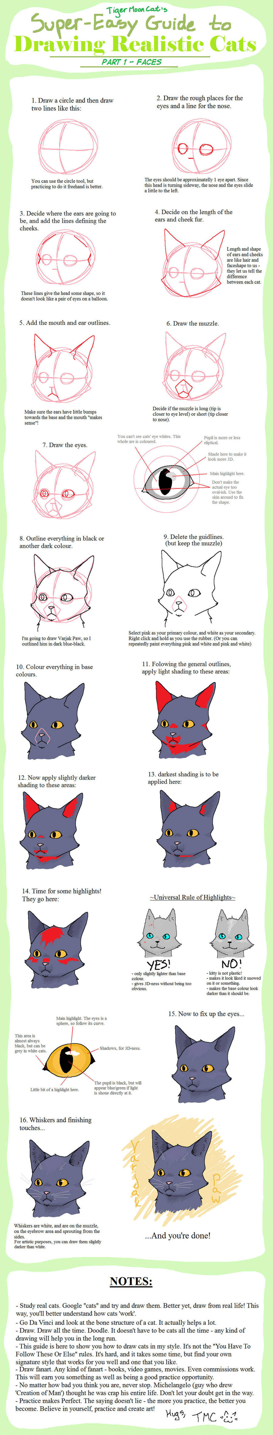 super easy guide to drawing realistic cats faces by tigermooncat