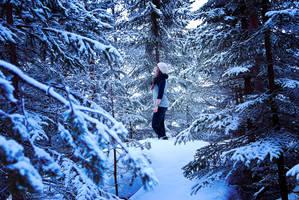 Norwegian winter. by 2ne92