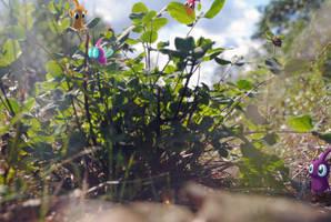 A Plant With Pikmin by IndianaJonas