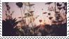 F2U sunset flowers stamp by poppychu