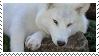 White Wolf Stamp    F2U by poppychu