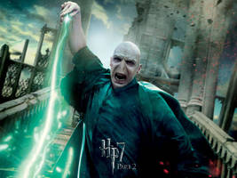 Voldemort Action Wallpaper by HarryPotter645