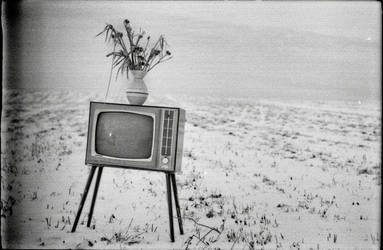 TV by choeba