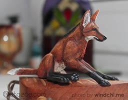 Maned wolf 2 by metazoe