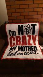 Big Bang Theory Graphghan by AmandaJayne00