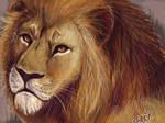 Oekaki...Lion by guardianofire