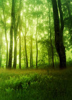 Premade Background 20 by maiarcita