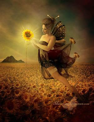 Sunflowers Fairy by maiarcita