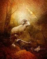 Aries by maiarcita